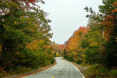 CP_autumn_scenics_roadside_splendor_100120_RW