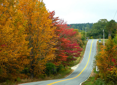 CP_autumn_scenics_roadside_splendor_2_100120_RW