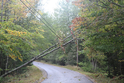 IA_Wind_Storm_Tree_2_100120_LL