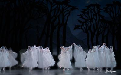 Artists of Het Nationale Ballet