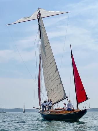 WP_ERR_Cornish_topsail_081221_CF