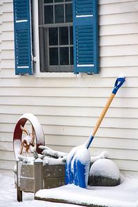 CP_snowstorm_that_wasn't_winter_still_life_020421_RW