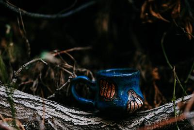 Fall_Mugs-6