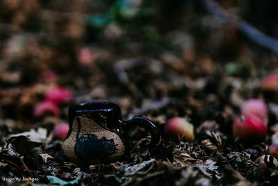 Fall_Mugs-4