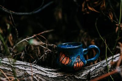 Fall_Mugs-5