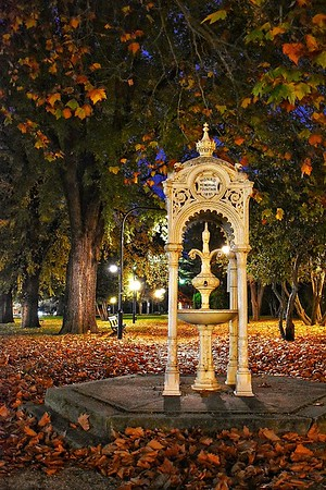 Monro Fountain by Night
