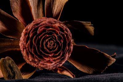 Dramatic Flower