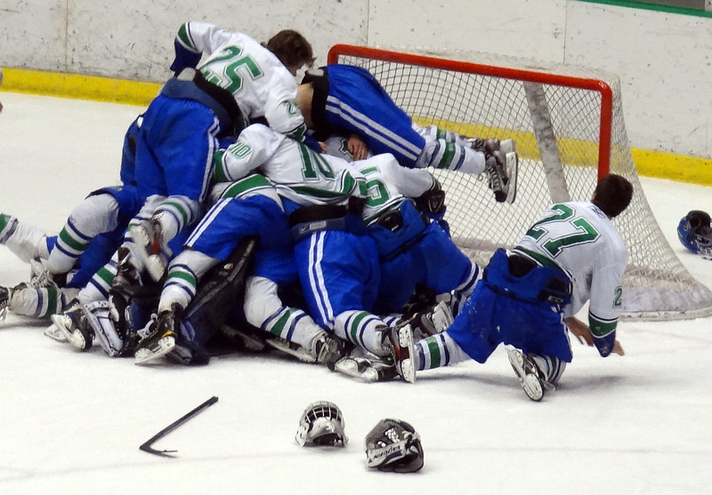 Eagan Hockey goes to State