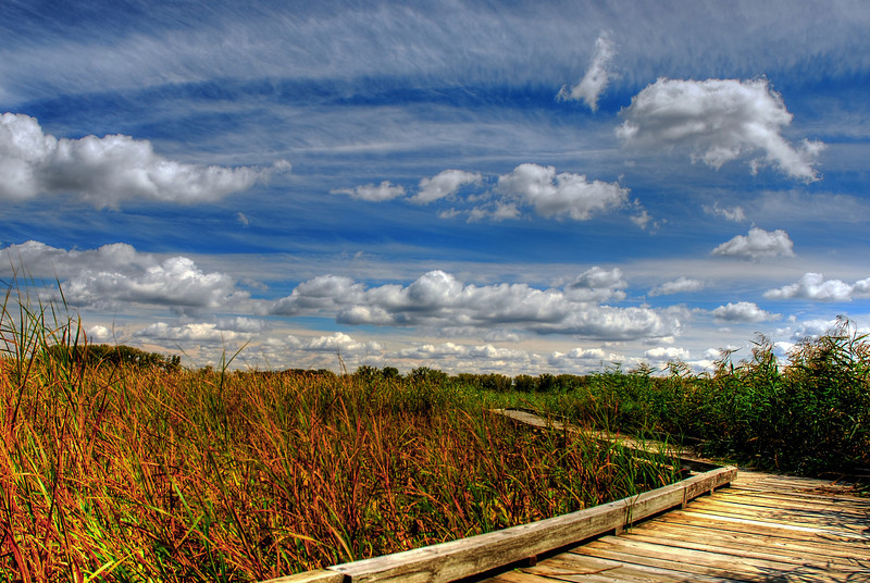 Fall at the Minnesota Valley Wildlife Refuge