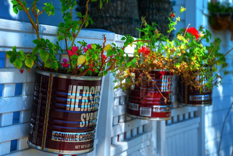 Hershey's garden