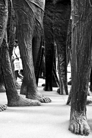 [365.258] Among Giants <i>Chicago, Illinois — September 15, 2009</i>  © Brendan Cox — All Rights Reserved