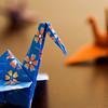 [365.001] Cranes