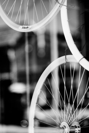 [365.135] Velocity <i>Berkeley, California — May 15, 2009</i>  Wheels in the window of a bike shop on Solano Avenue.  I took a stroll down Solano while Elizabeth got her nails done for Robin's wedding with some of the other bridesmaids.  © Brendan Cox — All Rights Reserved
