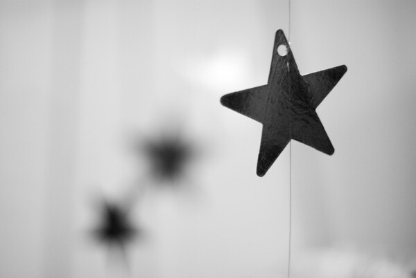 [365.314] Hanging Stars in the Sky <i>Alameda, California — November 10, 2009</i>  © Brendan Cox — All Rights Reserved