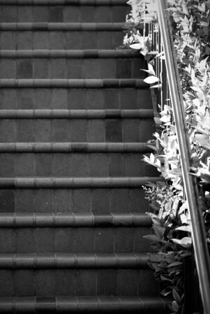 [365.107] Ninth Street Stair <i>Oakland, California — April 17, 2009</i>  A staircase in downtown Oakland.  © Brendan Cox — All Rights Reserved