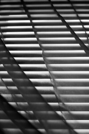 [365.213] Morning Light <i>Alameda, California — August 1, 2009</i>  © Brendan Cox — All Rights Reserved