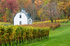 We spent a night in the Niagara Falls region with a friend and toured some vineyards for photography and sampling! This is a barn at Hidden Bench Winery. Still lots of colour but it won't last long!