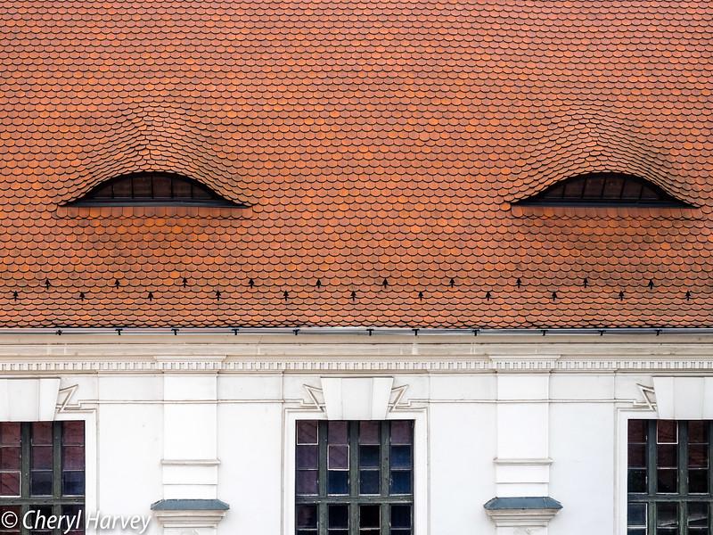 Roof Detail, Szentendre, Hungary