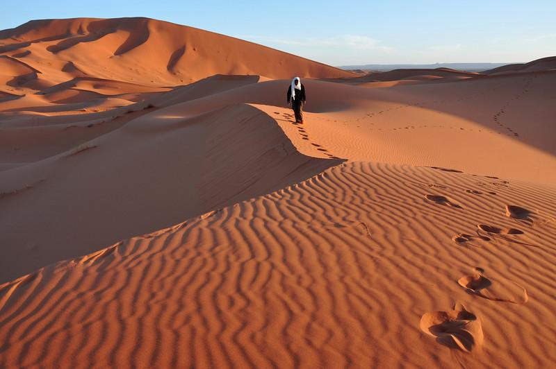 Camel Safari, The Sahara Desert