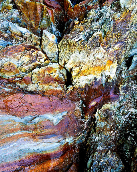 Rock Face, Great Smoky Mountains