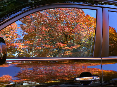 Autumn in Portland, 2017