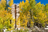 A marble pillar surrounded by 'on fire' Aspens.