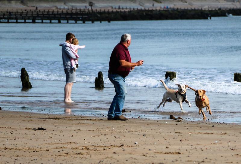 at the beach1.jpg