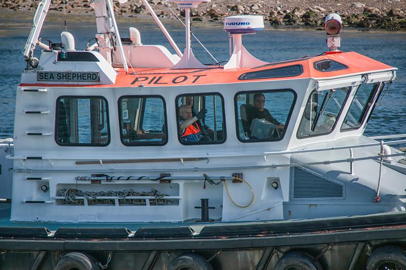 Sea Shepherd Pilot Boat Aberdeen Harbour  Zoomed in.jpg