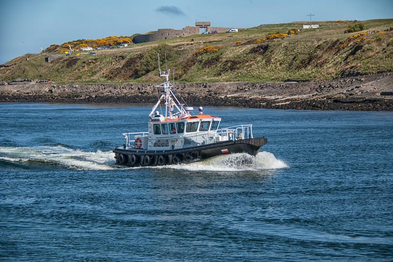 Sea Shepherd Pilot Boat sails into the harbour.jpg