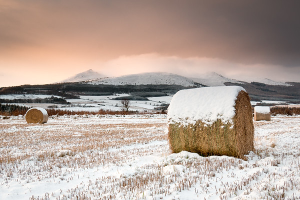 Wintry Sunrise at Bennachie