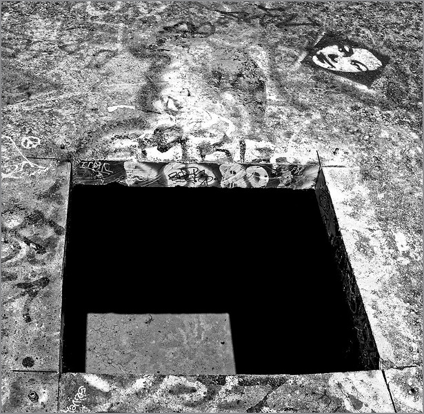 Hidden Sidewalk (Lizard Chamber), #DSF..8390.2017