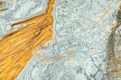 Gold and Grey Sandstone patterns, Point Lobos, Ca.