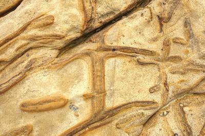 Sandstone cross patterns. Point Lobos,Ca.