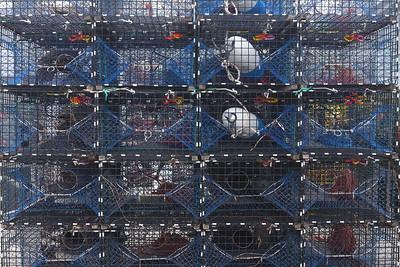 Lobster Cages- Bernard Harbor, Mount Desert Isle, Maine, October 2007; Canon 40D