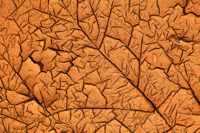 Dry cracked clay patterns