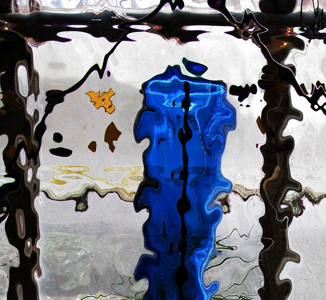 'garden glass' (canon g9)