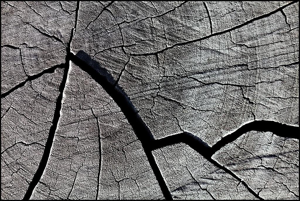 <center><i>Untitled  (Summit Stump)</i>, #2270-7D</center>