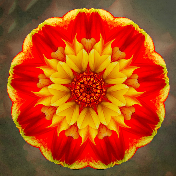 Floral Reverie #5
