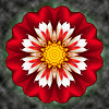 Floral Reverie #8