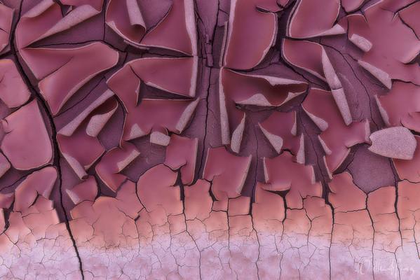 Desert Tangrams