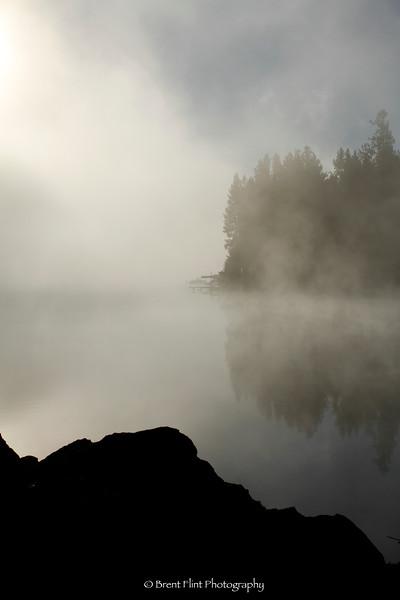 DF.3296 - silhouette of pines and shoreline of the Spokane River, Black Bay Park, Post Falls, Kootenai County, ID.