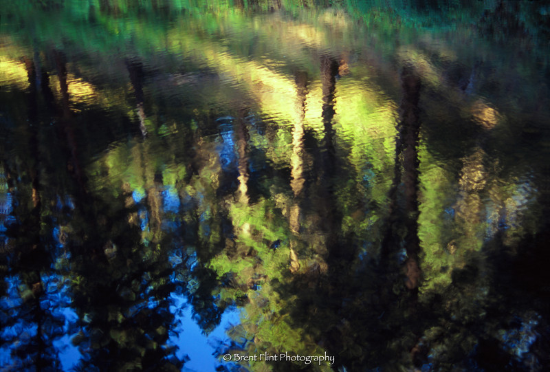 S.4855 - Forest reflections in Cocolalla Creek, Round Lake State Park, ID.