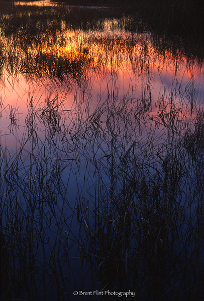 S.3392 - marsh at sunset (reflections), Moose Willow State Wildlife Area, MN.