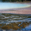 Grand Prismatic Spring #159, Yellowstone