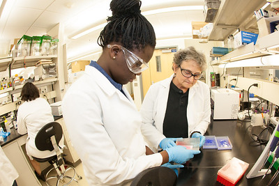 Ololade Olawale (left) and teacher, Paula Dell of Chicago look at samples taken in Antarctica at the Arctic Health and Research Building.  Filename: AAR-12-3457-10.jpg