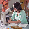 "Kelsey Gordon studies for a quiz in her summer sessions anatomy and physiology lab in the Murie Building.  <div class=""ss-paypal-button"">Filename: AAR-13-3856-30.jpg</div><div class=""ss-paypal-button-end"" style=""""></div>"