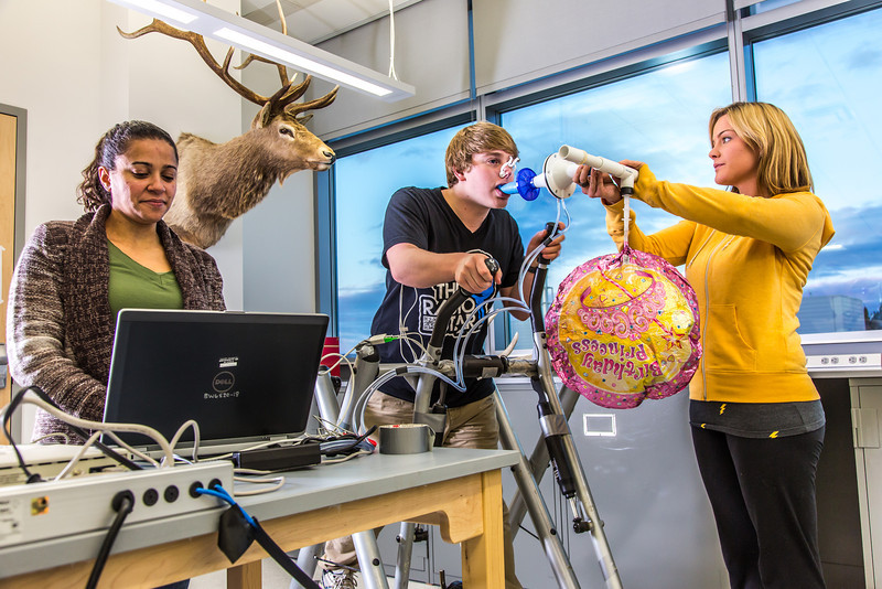 """Chris Wilson works out on a stair step machine while classmates Ashley Jacobs (in yellow) and Marisol Bastiani collect data measuring his respiration during a human physiology lab in the Murie Building.  <div class=""""ss-paypal-button"""">Filename: AAR-13-3983-14.jpg</div><div class=""""ss-paypal-button-end"""" style=""""""""></div>"""