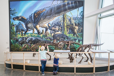 Children observe a mounted dinosaur skeleton display of Ugrunaaluk kuukpikensis, an arctic duck-billed hadrosaur at the University of Alaska Museum of the North.  Filename: AAR-16-4890-78.jpg