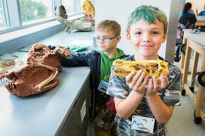 Youngsters learn all about dinosaurs in Summer Sessions' DinoCamp at the Murrie Building.  Filename: AAR-14-4242-22.jpg