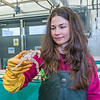 "Fisheries major Christy Howard inspects one of the immature king crabs being kept for study at UAF's Lena Point facility near Juneau.  <div class=""ss-paypal-button"">Filename: AAR-14-4058-23.jpg</div><div class=""ss-paypal-button-end"" style=""""></div>"